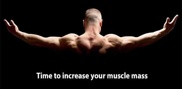 foods to increase your testosterone muscle mass