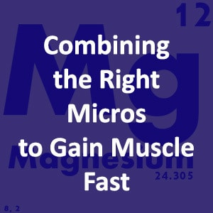 How to Combine the Right Micros to Gain Muscle Fast