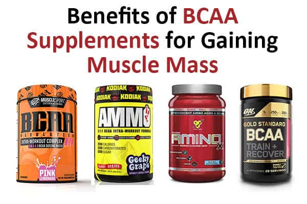 benefits bcaa supplements muscle mass